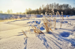 Winter landscape with sun and river Royalty Free Stock Image