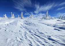 Winter landscape. In sunny day Stock Photo