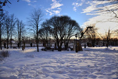 Winter landscape. On sunny day Royalty Free Stock Image