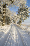 Winter landscape on sunny day Royalty Free Stock Image