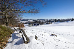 Winter landscape on a sunny day Royalty Free Stock Photos
