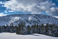 Winter landscape on a sunny day Royalty Free Stock Photography