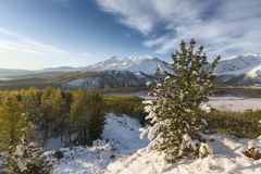 Winter landscape in sunny day royalty free stock photography