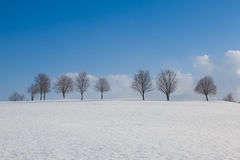 Winter landscape in sunny day Royalty Free Stock Photo