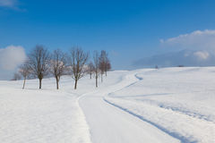 Winter landscape in sunny day Stock Image