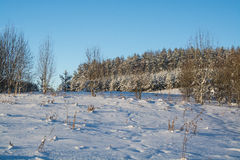 Winter landscape. Sunny day. Winter decline. The bright colors. Simple landscape. Winter forest.  forest road. winter fild. Stock Photo