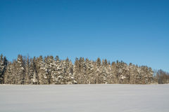 Winter landscape. Sunny day. Winter decline. The bright colors. Simple landscape. Winter forest.  forest road. winter fild. Stock Photography