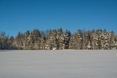 Winter landscape. Sunny day. Winter decline. The bright colors. Simple landscape. Winter forest.  forest road. winter fild. Stock Photos