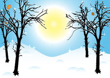 Winter landscape in sunny freezy day Stock Photos