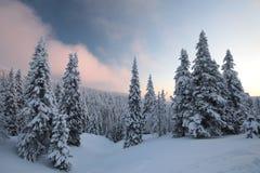 Winter landscape at sunrise stock photo