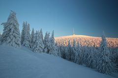 Winter landscape at sunrise royalty free stock photos