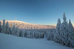 Winter landscape at sunrise stock images