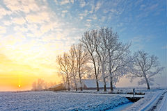 Winter landscape at sunset Royalty Free Stock Image