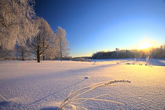 Winter Landscape at Sunset Royalty Free Stock Images