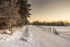Beautiful Winter Landscape in Lapland,Finland. Winter landscape at sunset in Lapland,Finland Stock Photos