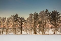 Beautiful Winter Landscape in Lapland,Finland. Winter landscape at sunset in Lapland,Finland Stock Photography