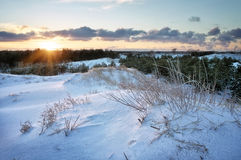 Winter Landscape with sunset sky. Stock Photo