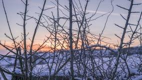 Winter landscape during sunset stock images