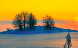 Winter landscape at sunset Royalty Free Stock Photos