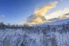 Winter landscape in Svandalen nature reserve Royalty Free Stock Photos