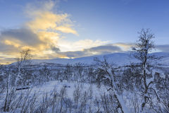 Winter landscape in Svandalen nature reserve Royalty Free Stock Photography