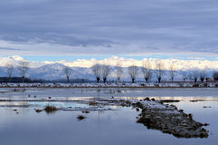Winter landscape. Swamp and mountains with snow and ice Royalty Free Stock Photography