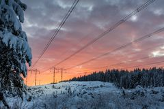 Power lines in the sunset. A winter landscape in sweden with some power lines and pine trees royalty free stock images
