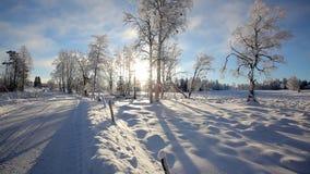 Winter landscape stock footage