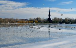 Winter landscape on the Tabacarie Lake in Constanta, Romania Royalty Free Stock Photography