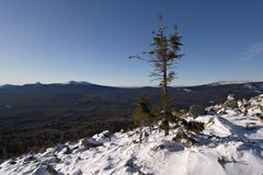 Winter landscape.Taiga,Ural mountains.Lonely tree. Royalty Free Stock Photography