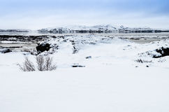 Winter landscape at Thingvellir National Park, Iceland Royalty Free Stock Photography