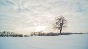 Winter landscape, timelapse of flying clouds above lonely tree with sun rays. Timelapse. stock video footage
