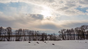 Winter landscape, timelapse of flying clouds above trees. Timelapse. stock footage