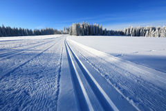 Winter landscape and trails for skiers Stock Images
