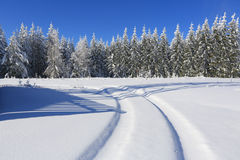Winter landscape and trails for skiers Stock Photography