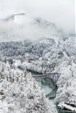 Winter landscape train Stock Photography