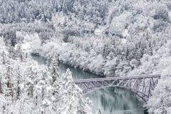 Winter landscape train Royalty Free Stock Photos