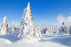 Winter Landscape in Transylvania. 