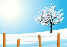 Winter landscape with tree Royalty Free Stock Photo