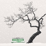 Winter landscape with a tree and a bench Stock Images