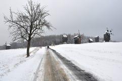 Winter landscape, tree, old windmills Royalty Free Stock Photo