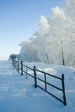 Winter landscape and trees Stock Photos