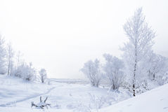 Winter landscape. Trees and bushes with hoarfrost. The water in the river floating mist. cold season. a grayish-white crystalline Stock Photo