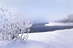 Winter landscape. Trees and bushes with hoarfrost. The water in the river floating mist. cold season. a grayish-white crystalline Stock Image