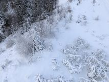 Winter landscape. Trees covered in snow, view from above Royalty Free Stock Image