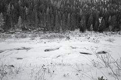 Winter landscape. Trees and frozen river Stock Photos