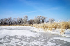 Winter landscape with trees, frozen river Stock Photo