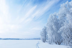 Winter Landscape Stock Photos