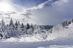 Winter landscape, trees in mountains covered with hoarfrost Stock Image