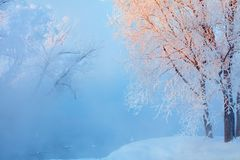 Winter landscape of trees and river in a foggy morning. Frost and cold and sunshine stock photo